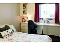 Student room to rent - 3 Bed Apartment - Sheffield Pinnacles (Students Only)