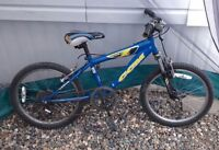 Boys ccm bike