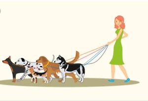 Dog/puppy walker