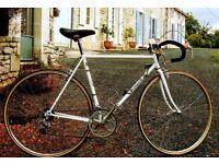Ferraroli Vintage Bike ( Columbus Frame with Shimano Golden Arrow)