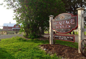 Heritage Stables - Horse Boarding Available!