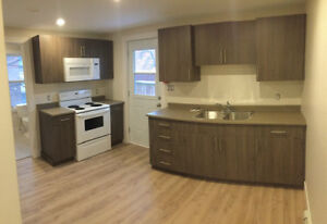 Newly Renovated 1 BDRM Apartments Downtown Avail Dec 1 - Dec 15