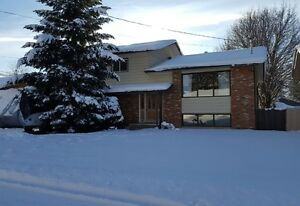 House for sale in Selkirk hill neighbourhood
