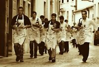 Serveur/Serveuse, Barman/Barmaid, Runner, Busboy, Hostess