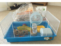 Hamster cage with food, sawdust and accessories