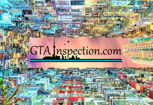 Professional Home Inspection (Certified & Insured Inspectors)