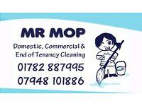 Mr Mop, Local Cleaner/Home help