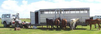12 HORSE TRAILER Mount Barker Mount Barker Area Preview