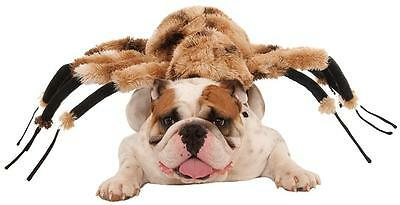 Giant Spider Animal Bug Scary Funny Fancy Dress Up Halloween Pet Dog Cat Costume (Scary Spider Dog Costume)