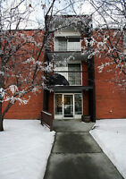 Fully Renovated Two Bedroom, avail June 1 pking incl