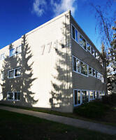 CHINOOK PARK, Hastings Apartments