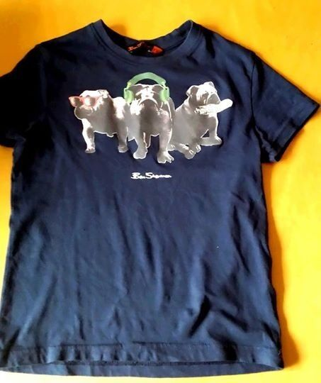 Boys Ben Sherman Bulldog t-shirt