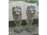 Pair sitting concrete lions