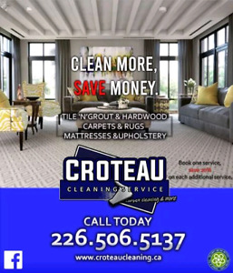 Professional carpet cleaning & more