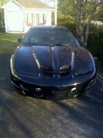 1998 Pontiac Trans Am cuire RAM AIR WS6 5,7 t-top manuelle