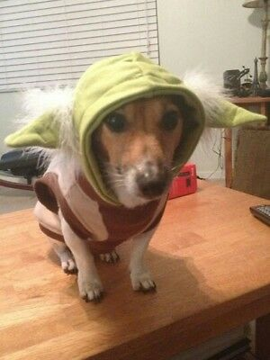 Star Wars Classic Pet Yoda Dog Halloween - Pet Halloween Costumes Canada