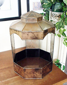 Stained Gold Lace Design Glass Terrarium