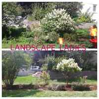 Garden clean up. FREE quotes. Great prices.