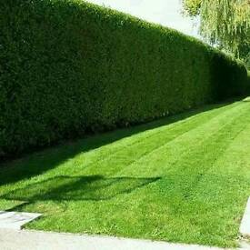 Woodside Garden Services