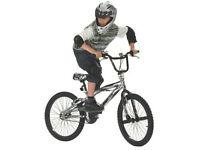 Magna Wrath BMX Bike