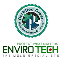 Professional Mould Removal Specialists