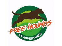 Dog walking by Free Hounds - K9 Adventures!