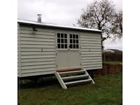 LAND WANTED in/near Swaffham with access for a caravan. 15mx15m or larger. For rent or sale asap