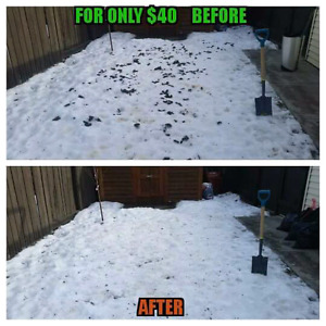 Dog Waste / Dog poop clean up