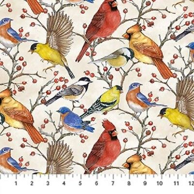 Song Bird cotton quilt fabric by Northcott Cardinal Bluebird Tossed Birds Cream