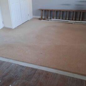Bedroom Carpet & Underlay