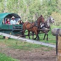 Trail rides, wagon rides, overnnighters and much much more