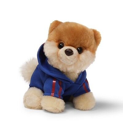 GUND Itty Bitty Boo - Wearing a Jogging Suit - The Worlds Cutest Dog - Soft Toy