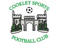 Cookley Sports Titans (U16s) 2017/2018 Season - Players Wanted