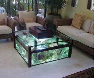 Used Fish Tank Coffee Table Part 36