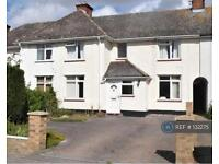 3 bedroom house in Swiss Avenue, Chelmsford, CM1 (3 bed)