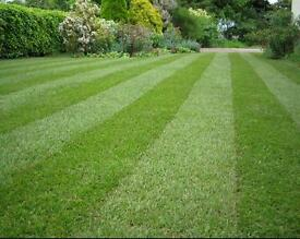 Grounds maintenance / gardener position