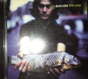 David Usher little things cd