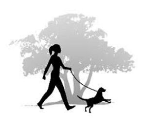 Dog walking service in Squamish area
