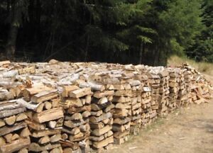 Seasoned birch firewood delivered