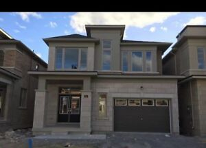 Newmarket Brand new house for rent