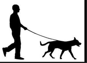DOG WALKING/ SITTING/ OVERNIGHT SERVICES AT UNBEATABLE PRICES