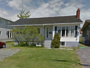 50A Thorburn Rd – Room Available in Newly Renovated Bsmt Apt