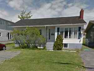 50 Thorburn Rd – Room Available in Newly Renovated Bsmt Apt