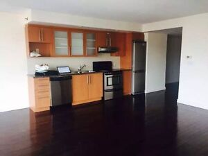 Luxury 4 1/2  condo in the heart of Montreal Downtown