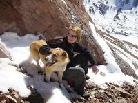 Friendly Dog Walker (Brigthon/Hove)