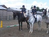 Rider available in North Herts