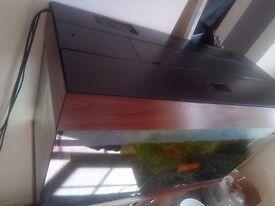125L fish tank- very good condition- FLASH SALE!