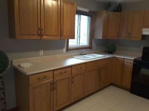 immaculate kitchen cupboards, counter tops & double ceramic sink