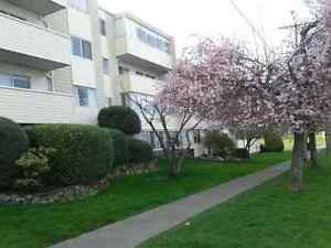 Completely Furnished 2 Bedroom/2 Bathroom Condo for Sale