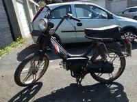 Honda pa50 Camino Project